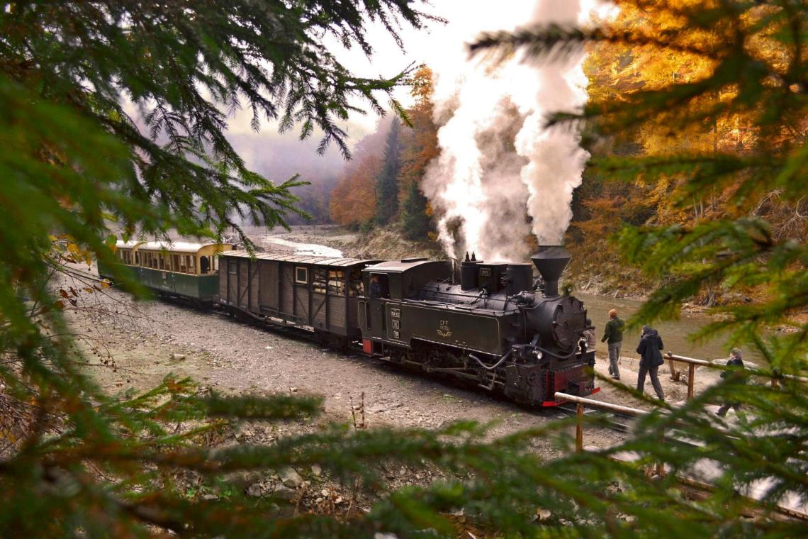 Mocanita Steam Train, Maramures Romania